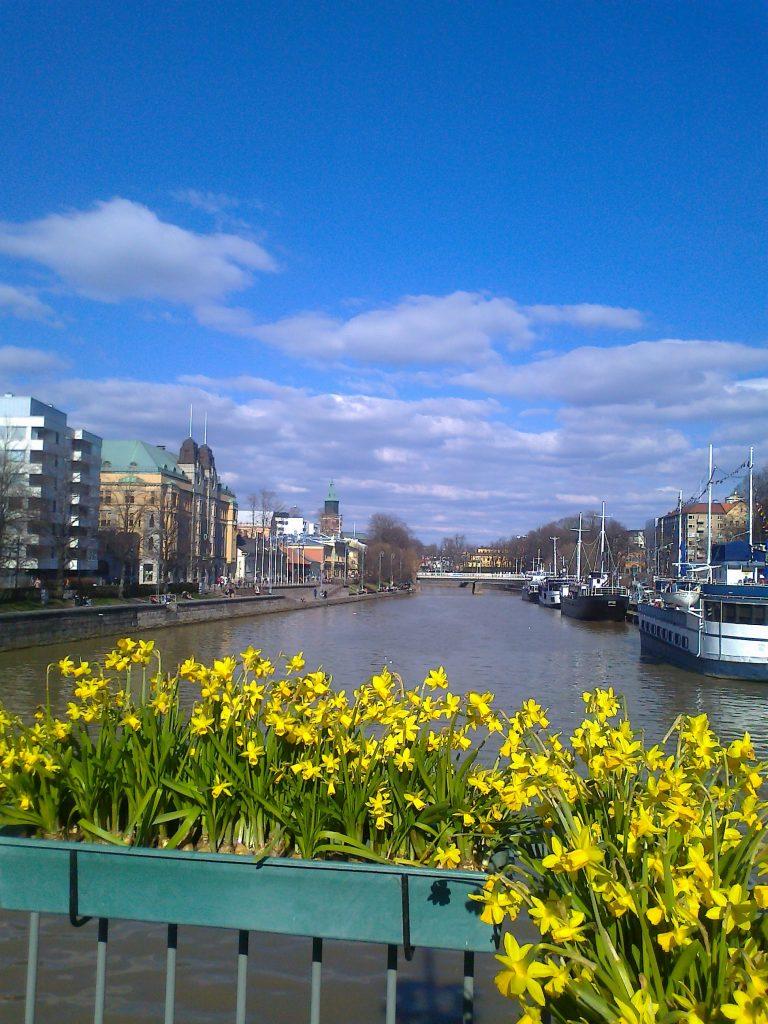 Kuva kaupungin poikki virtaavasta joesta sillalta, jonka etualalla on keltaisia narsisseja juhlistamassa kevään koittoa.